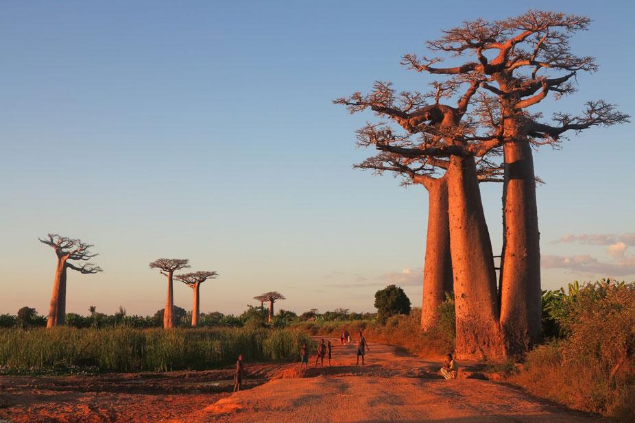 Xenia Viaggi - Destinazione Madagascar