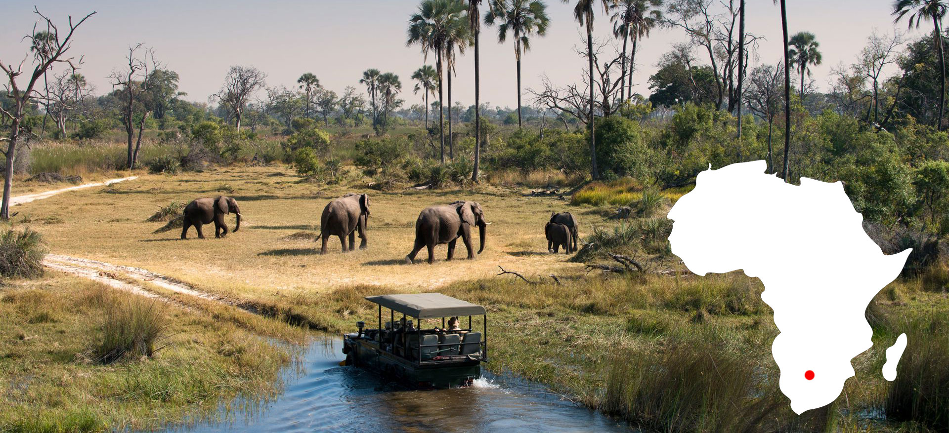 Xenia Viaggi - Okavango Delta Del Botsuana